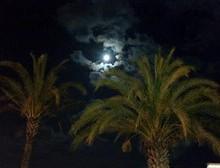 Longe côte au clair de lune (6 novembre 2014)