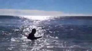 Marche aquatique côtière (1)